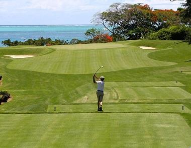 Golfåret 2019